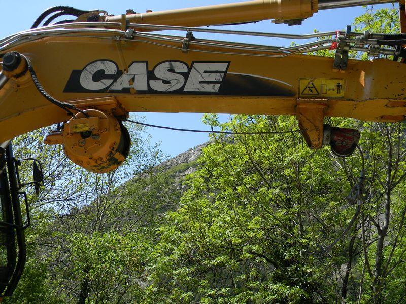 Case WX 200 ( Pelle forestière )
